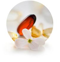 Captek International Herbs & Botanicals